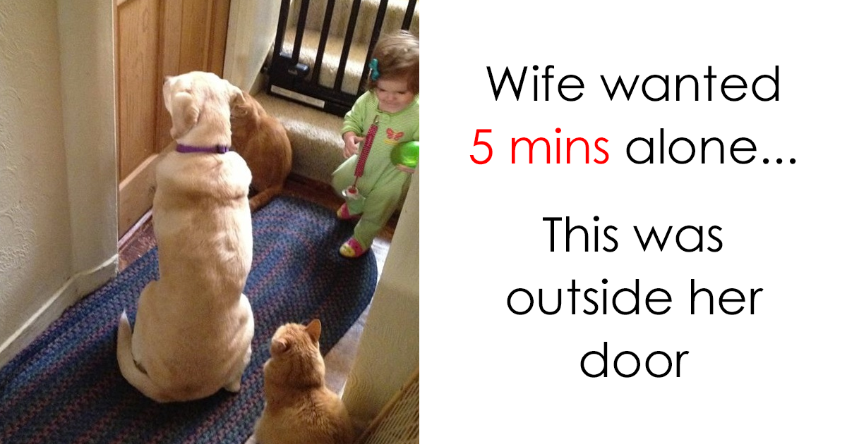 Dog Videos With Kids That Will Make You Laugh